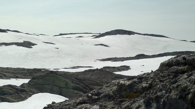 fra Breifonn: reinsdyr