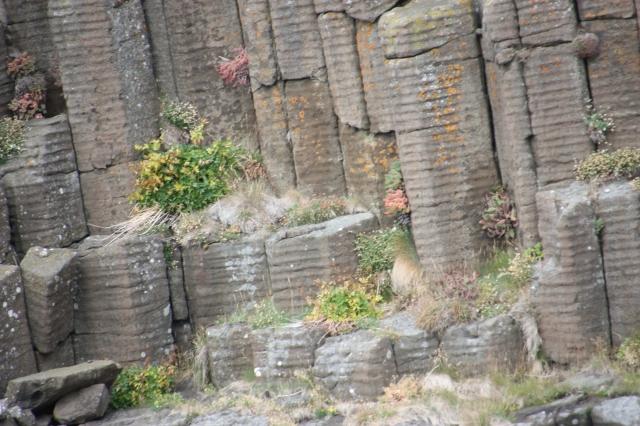 et av naturens mange underverk  -  søylebasalt fra øy i Breiðafjörður