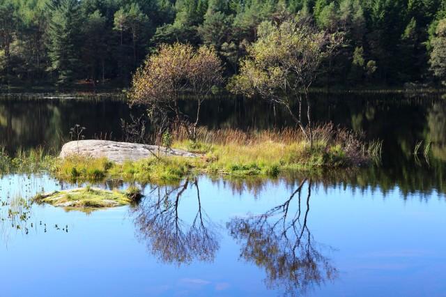 Moksheimsvatn