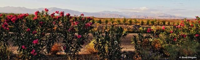 Marokko: fra Anti-Atlas