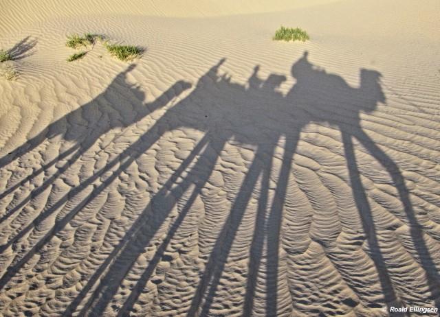 Tunisia: nær Zafrane