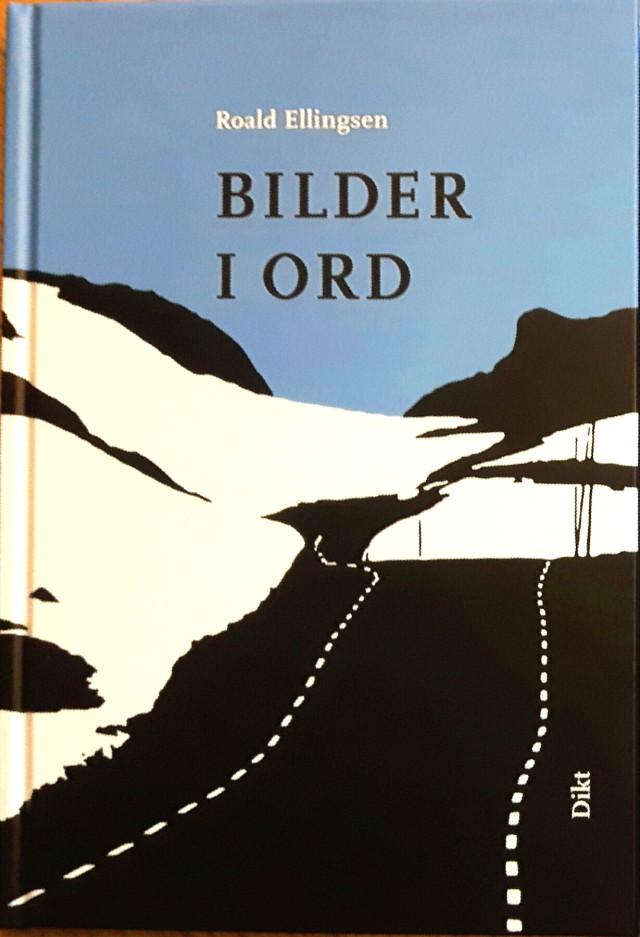BILDER I ORD forside x